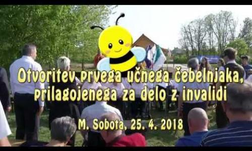 Embedded thumbnail for 25.04.2018 - Učni čebelnjak pri DPPP